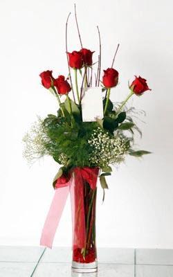 Kıbrıs 14 şubat sevgililer günü çiçek  6 adet kirmizi gül ve cam yada mika vazo