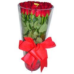 Kıbrıs çiçek mağazası , çiçekçi adresleri  12 adet kirmizi gül cam yada mika vazo tanzim