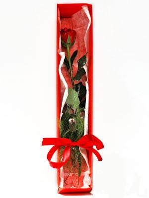 Kıbrıs çiçek yolla , çiçek gönder , çiçekçi   1 adet kutuda gül