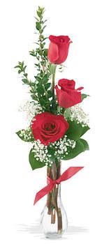 Kıbrıs 14 şubat sevgililer günü çiçek  mika yada cam vazoda 3 adet kirmizi gül