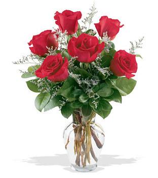 Kıbrıs 14 şubat sevgililer günü çiçek  cam yada mika vazoda 6 adet kirmizi gül