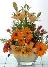 Kıbrıs kaliteli taze ve ucuz çiçekler  cam yada mika vazo içinde karisik mevsim çiçekleri