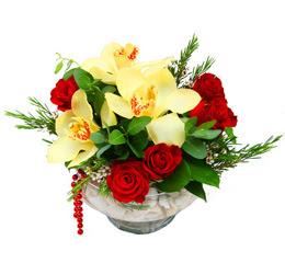Kıbrıs çiçek satışı  1 adet orkide 5 adet gül cam yada mikada