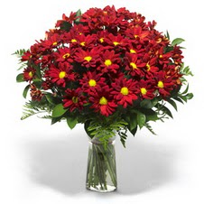 Kıbrıs çiçekçi telefonları  Kir çiçekleri cam yada mika vazo içinde