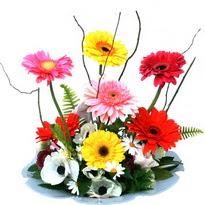 Kıbrıs çiçek siparişi sitesi  camda gerbera ve mis kokulu kir çiçekleri
