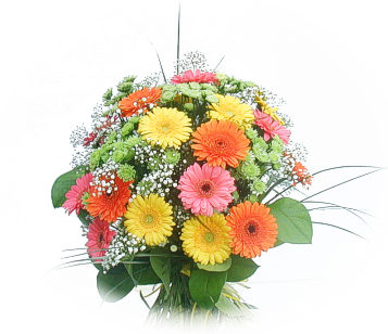 13 adet gerbera çiçegi buketi  Kıbrıs cicekciler , cicek siparisi