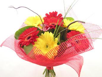 9 adet gerbera çiçeklerinden buket  Kıbrıs ucuz çiçek gönder