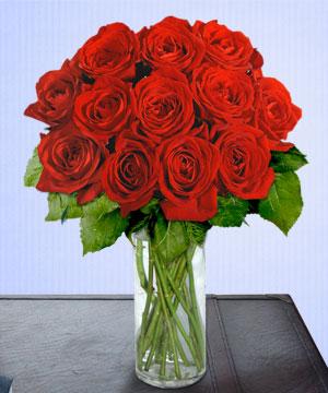 Anneme 12 adet cam içerisinde kirmizi gül  Kıbrıs çiçekçiler