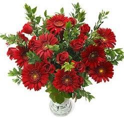 5 adet kirmizi gül 5 adet gerbera aranjmani  Kıbrıs çiçek siparişi sitesi