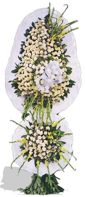 Dügün nikah açilis çiçekleri sepet modeli  Kıbrıs çiçek gönderme