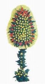 Kıbrıs çiçekçi telefonları  dügün açilis çiçekleri  Kıbrıs cicekciler , cicek siparisi