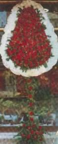Kıbrıs çiçek gönderme  dügün açilis çiçekleri  Kıbrıs çiçek yolla , çiçek gönder , çiçekçi
