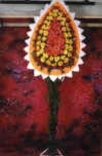 Kıbrıs ucuz çiçek gönder  dügün açilis çiçekleri  Kıbrıs hediye çiçek yolla