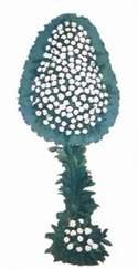 Kıbrıs cicekciler , cicek siparisi  dügün açilis çiçekleri  Kıbrıs online çiçekçi , çiçek siparişi