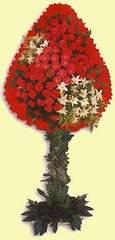 Kıbrıs çiçek satışı  dügün açilis çiçekleri  Kıbrıs çiçek mağazası , çiçekçi adresleri