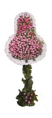 Kıbrıs çiçekçi mağazası  dügün açilis çiçekleri  Kıbrıs online çiçek gönderme sipariş