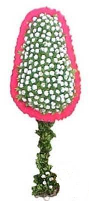 Kıbrıs çiçek , çiçekçi , çiçekçilik  dügün açilis çiçekleri  Kıbrıs uluslararası çiçek gönderme