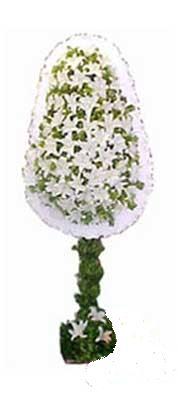 Kıbrıs çiçekçiler  nikah , dügün , açilis çiçek modeli  Kıbrıs cicekciler , cicek siparisi