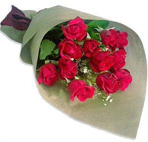 Uluslararasi çiçek firmasi 11 adet gül yolla  Kıbrıs güvenli kaliteli hızlı çiçek