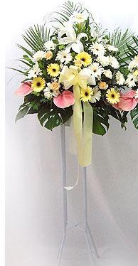 Kıbrıs cicekciler , cicek siparisi   perförje çiçegi dügün çiçekleri
