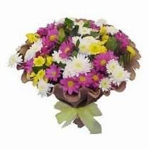 Kıbrıs çiçek , çiçekçi , çiçekçilik  Mevsim kir çiçegi demeti