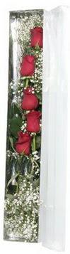 Kıbrıs çiçekçiler   5 adet gülden kutu güller