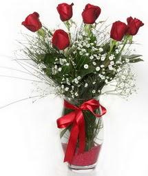 7 adet gülden cam içerisinde güller  Kıbrıs hediye sevgilime hediye çiçek