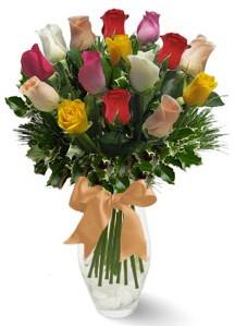15 adet vazoda renkli gül  Kıbrıs internetten çiçek siparişi