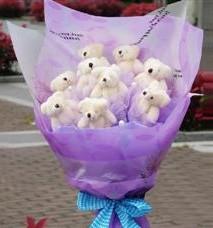 11 adet pelus ayicik buketi  Kıbrıs çiçekçi mağazası