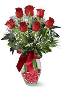 Kıbrıs online çiçek gönderme sipariş  7 adet kirmizi gül cam vazo yada mika vazoda