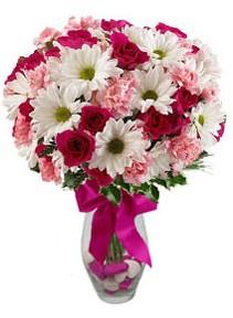 Kıbrıs çiçekçiler  Karisik mevsim kir çiçegi vazosu