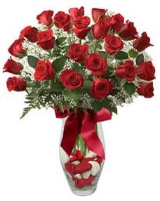 17 adet essiz kalitede kirmizi gül  Kıbrıs güvenli kaliteli hızlı çiçek