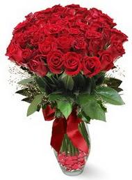 19 adet essiz kalitede kirmizi gül  Kıbrıs hediye sevgilime hediye çiçek