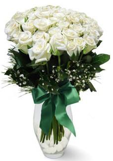 19 adet essiz kalitede beyaz gül  Kıbrıs çiçek siparişi vermek