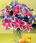 Kıbrıs güvenli kaliteli hızlı çiçek  Sevgi bahçesi Özel  bir tercih