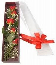 kutu içinde 5 adet kirmizi gül  Kıbrıs online çiçek gönderme sipariş