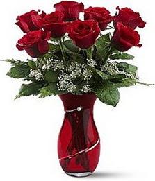 Vazo içinde 8 adet kirmizilar içinde güller  Kıbrıs online çiçek gönderme sipariş