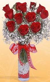 10 adet kirmizi gülden vazo tanzimi  Kıbrıs çiçekçiler