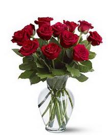 Kıbrıs çiçek gönderme  cam yada mika vazoda 10 kirmizi gül