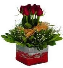 Kıbrıs çiçek satışı  7 adet mika yada cam vazoda gül tanzimi
