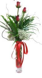 Kıbrıs çiçekçiler  3 adet kirmizi gül vazo içerisinde