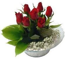 Kıbrıs internetten çiçek siparişi  cam yada mika içerisinde 5 adet kirmizi gül