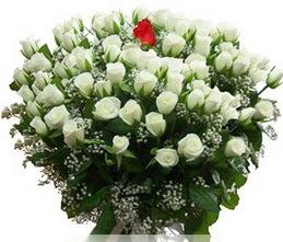 Kıbrıs internetten çiçek siparişi  100 adet beyaz 1 adet kirmizi gül buketi