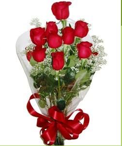 Kıbrıs anneler günü çiçek yolla  10 adet kırmızı gülden görsel buket