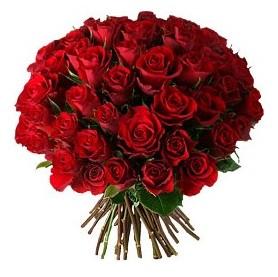 Kıbrıs hediye çiçek yolla  33 adet kırmızı gül buketi
