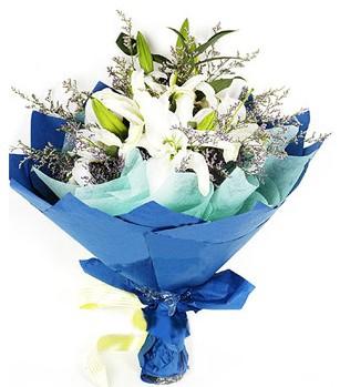 Kıbrıs çiçek online çiçek siparişi  4 adet dal kazablankadan görsel buket