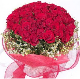 Kıbrıs İnternetten çiçek siparişi  29 adet kırmızı gülden buket