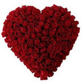Kıbrıs internetten çiçek satışı  muhteşem kırmızı güllerden kalp çiçeği