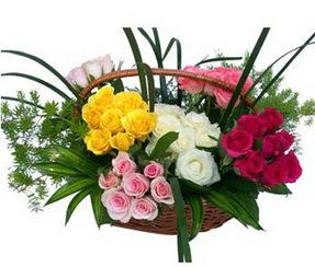 Kıbrıs çiçekçi mağazası  35 adet rengarenk güllerden sepet tanzimi