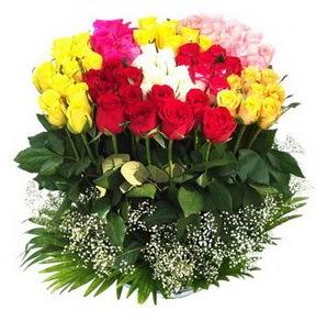Kıbrıs güvenli kaliteli hızlı çiçek  51 adet renkli güllerden aranjman tanzimi